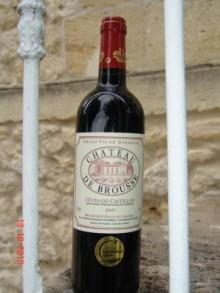 Vignobles-Bessineau-vins-Francais-de-vignobles-de-st-emilion4
